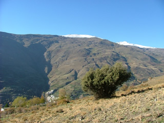 Trevelez with Mulhacen in the background - the highest peak of the Alpujarras in Andalucia